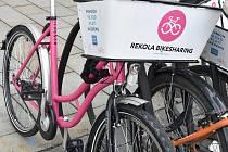 Růžová kola