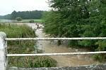 Břehovský potok a pole v jeho okolí se změnily v zaplavenou krajinu, kterou se dere napříč kalný proud, který sbírá vodu i z nových rybníků, vytvořených deštěm na polích.