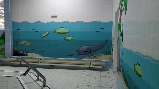 Proměny malého bazénu