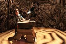 V písecké galerii začala výstava Les. Potrvá do září. Na snímku stromogramofon v lípě.