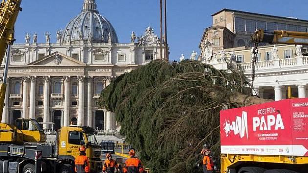 Strom z Falce dorazil do Vatikánu.
