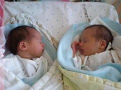 Velkou radost mají tatínek Petr Tondl a maminka Lenka. 27. června 2011 se jim narodila dvojčátka Kateřina a Lukáš. Porodní váha Kateřiny byla 2,54 kilogramů a na svět přišla v 8 hodin a 7 minut. Lukáš se narodil o minutu později a vážil 2,44 kilogramů.