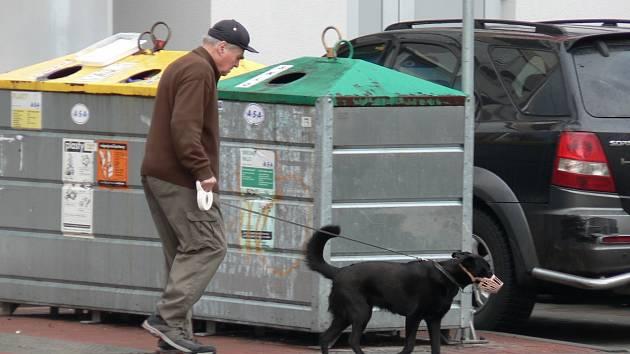 Majitelé psů mohou v Českých Budějovicích od ledna ušetřit. Díky nové podobě vyhlášky.