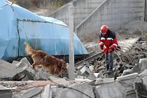 Psí záchranáři zamíří i do Čech.