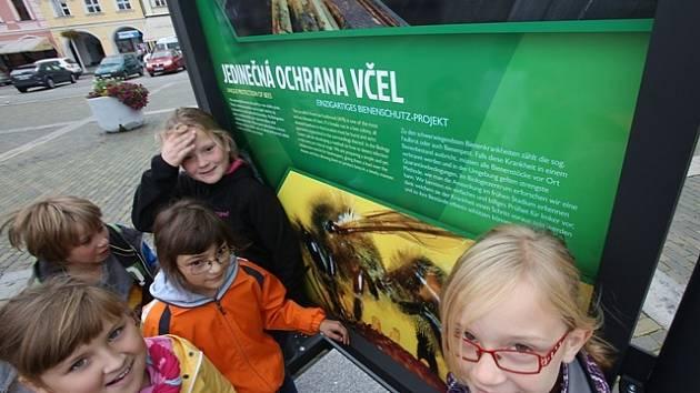 Výstava Biologického centra Akademie věd na náměstí v Českých Budějovicích.