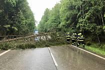Popadané stromy v sobotu odpoledne odstraňovali také hasiči v Jarošově nad Nežárkou. foto facebook Jarošova nad Nežárkou