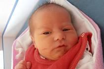 Veselí nad Lužnicí bude jistě krásným domovem pro 3,06 kg vážící Šarlotu Práškovou. Ta se narodila v pátek 16.3.2012 6 minut po 9. hodině. Šťastnými rodiči jsou Milan Prášek a Marta Krejčová.