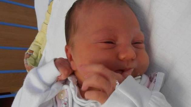 Manželé Jan a Patricie jsou pyšnými rodiči holčičky jménem Anna Marie Velikovská. Narodila se v neděli 16. června 2013 v 18 hodin a 19 minut. Po porodu vážila 3,47 kilogramů a bydlet bude v Praze. Na sestřičku se už moc těší pětiletá Apolenka.
