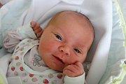Své první miminko, 3,52 kg vážící Šárku Havránkovou, přivedla na svět v sobotu 8. 7. 2017 ve 23.41 h Hana Vlásková. Domovem rodiny je Úsilné.