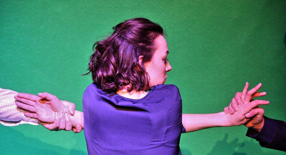 Jihočeská divadlo připravilo hru Téměř dokonalá láska o vězněné dívce na motivy reálného příběhu Nataschy Kampuschové.
