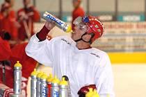 Slovenský obránce Tomáš Frolo odchází z HC Mountfield na roční hostování do Mladé Boleslavi.