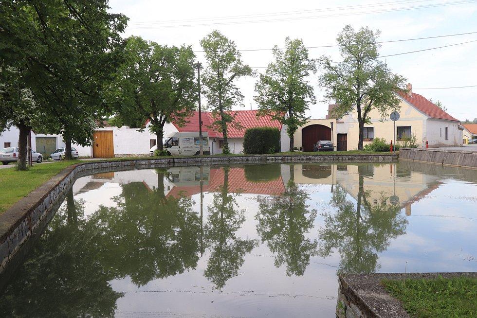 Lipí u Českých Budějovic. Ilustrační snímek