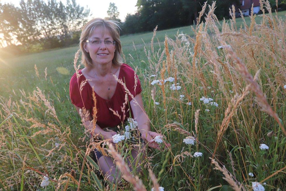 Radmila Malinovská při sběru bylinek v Holubově na Českokrumlovsku.
