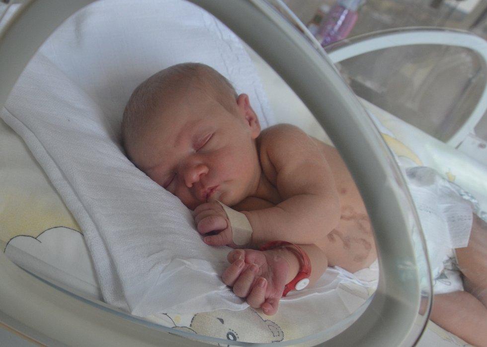 Elen Procházková z Bavorova. Prvorozená dcera Jany a Jiřího Procházkových se narodila 16. 3. 2021 ve 20.30 hodin. Při narození vážila 2650 g a měřila 45 cm.