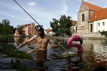 SOCHAŘ V ROLI POTÁPĚČE. Michal Trpák (na snímku) ze skupiny 4sochaři vytahoval včera z vody na slepém rameni Malše v Budějovicích sochu plameňáka, kterou vandalové shodili z tyče do řeky.