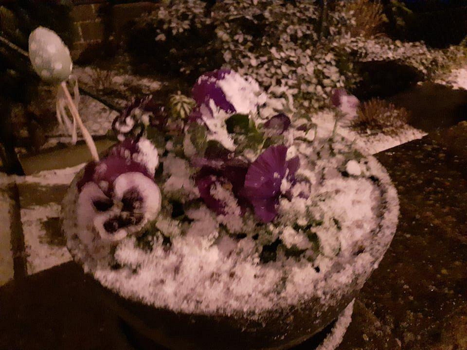 V pondělí kolem 16. hodiny začalo na Budějovicku sněžit. Snímek je z Lišova.