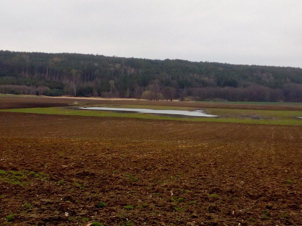 Práce na polích letos více než v jiných letech komplikují deště. Místy se vytvořily i malé rybníčky, které hbitě obsadilo vodní ptactvo. Na snímku pole u Čakova.
