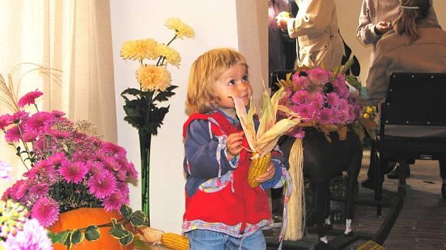 V žumberské tvrzi, která patří pod Jihočeské muzeum, se o víkendu konala již po 22. výstava chryzantém, spojená s ukázkou zahrádkářských výpěstků.