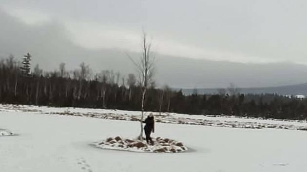 Žena vstoupila do nejpřísněji chráněného území NP Šumava a svůj prohřešek zveřejnila na instagramu.