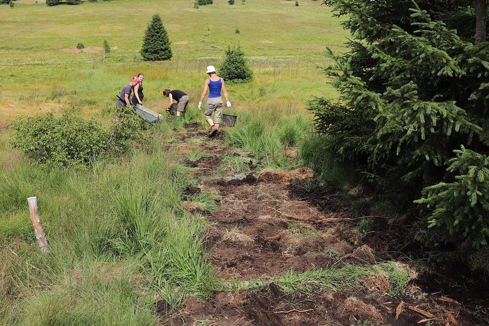 To hlavní, co dobrovolníci na Šumavě dělají, je stavění hrází ve starých odvodňovacích kanálech. Tím zabrání odtoku vody z mokřadů a vrátí je opět přírodě. Také je čekají exkurze do nedotčené přírody a diskuse.