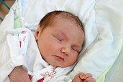 V Českých Budějovicích bude vyrůstat Šarlota Drůbová, kterou ve zdejší nemocnici přivedla na svět maminka Marie Drůbová 7. 8. 2017 v 9.54 h. Miminko po porodu vážilo 4,05 kilogramu.