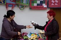 Klienti sdružení Fokus vystavují své výrobky v českobudějovickém domě U Beránka v Krajinské ulici. Koná se tu totiž akce Týden pro duševní zdraví. Vpravo na snímku je ředitelka sdružení Zdeňka Kuviková