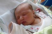 Loučej u Křemže bude domovem pro Stelu Šímovou. ta po narození vážila 3,85 kg. Rodiče Martina a Jan Šímovi se zaradovali z jejího příchodu na svět 14. 3. 2017 v 8.45 h.