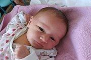 Natálie Jirková se v českobudějovické porodnici narodila v neděli 19. listopadu 2017 ve 11.56 hodin. Šťastná maminka Marcela Jirková tak má svého prvního potomka. Natálie po porodu vážila 2740 gramů a vyrůstat bude v Českých Budějovicích.