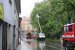 Strom spadl v ulici Na sadech v Českých Budějovicích do troleje. Doprava v krajském městě kolabuje.