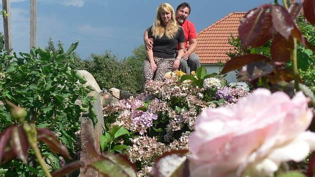 Zahrada. Ilustrační foto