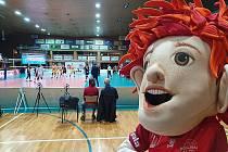 V Českých Budějovicích dohrával domácí Jihostroj sedmé kolo extraligy volejbalistů zápasem s týmem Lvi Praha