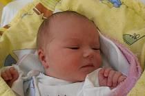 V úterý 6.11.2012 poprvé spatřila svět Šárka Novotná. Holčička s porodní váhou 3,08 kg se narodila přesně v 1 hodinu a 18 minut. Domovem jí bude město České Budějovice.