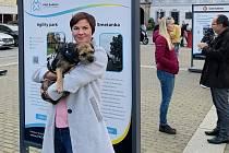 Agility park - psí hřiště, rozpočet 615 tisíc korun. Zuzana Čapková chce umožnit v okolí Palackého náměstí a Pražského předměstí volné venčení a výcvik psů.