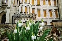 Jaro u zámku v Hluboké nad Vltavou fotil Tomáš Navara.