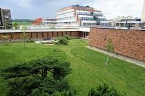 Střídavé sekání trávníku ve vnitrobloku pracoviště Biologického centra AV ČR v Českých Budějovicích (v pozadí jezírko s posezením).