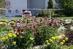 Květinová výzdoba centrálního parku Nemocnice v Českých Budějovicích