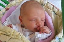 Veselí nad Lužnicí bude místem, kde své dětství prožije Natálie Čiperová. 3,18 kg vážící Natálka poprvé pohlédla na svět v pondělí 6.5.2013 v 16 hodin a 41 minut.
