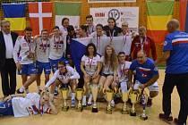 Nohejbalový turnaj v Písku se odehrál za účasti kvalitních týmů. Bohužel, David Višvader se zranil.