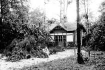 Stegmannů zahrada, altán a volejbalové hřiště po vichřici v roce 1956.