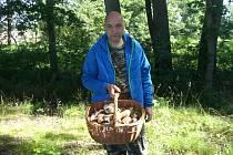 Za houbařskou sezonu nasbíral Alois Mánek 51 košíků hub.