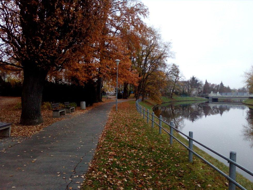 Radnice chystá revitalizaci parku v Dukelské ulici v Českých Budějovicích. Na snímku současná podoba.