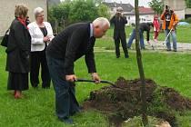 Přátelství mezi dvěma národy, které léta žily společně v jedné obci, budou připomínat v sobotu zasazené stromy na litvínovické návsi.  Dub tu zasadili Mitzi Reiter (bílé sako) a Joseph Seiler.