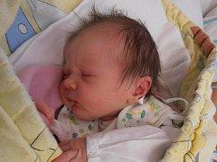 3,33 kg – to je krásná porodní váha, kterou se pyšní holčička z Dubného jménem Veronika Jedličková. Ta se narodila v českobudějovické porodnici v 5 hodin a 58 minut ve středu 31.10.2012. Doma už se na ni moc těší pětiletý bratříček Tomášek.