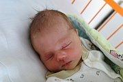 Olivera Vávru porodila Martina Vávrová 17. 7. 2017 v 8.33 h. Novorozenec, který bude svět poznávat doma v Českém Krumlově po boku dvouletého brášky Arthura, vážil 3,446 kg.