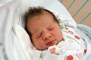 Petrovice budou domovem Adély Brabcové. Maminka Šárka Brabcová ji porodila 22. 1. 2019 ve 21.25 h., vážila 3,38 kg. Parťákem v životě jí bude 5letá sestra Lucinka.