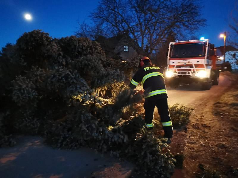 Hasiči likvidovali popadané stromy v Českých Budějovicích.
