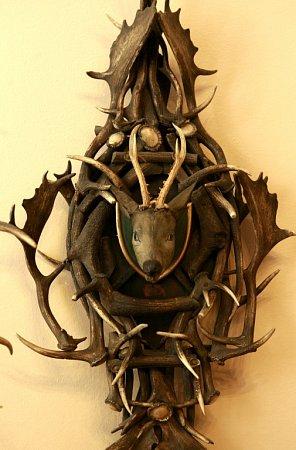 Muzeum Jindřichohradecka otevřelo novou expozici Emy Destinnové. Součástí jsou lovecké trofeje.