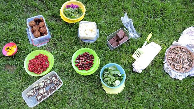Další veganský piknik