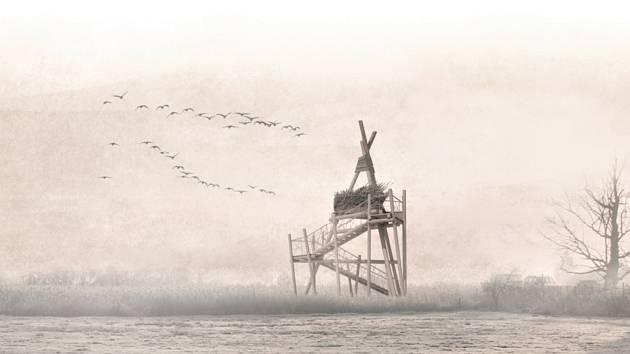 V oblasti přírodně cenných Vrbenských rybníků u Českých Budějovic má vzniknout ptačí pozorovatelna.