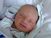 Pavlína Kubíková přivedla na svět svou prvorozenou dcerku Ester Kubíkovou 20. 2. 2018 v 11.10 h. Malá Ester vážila po porodu 2,91 kg. Poznávat svět bude s rodiči na Včelné.